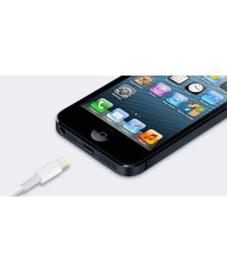 Cambio Conector Dock Iphone 5S